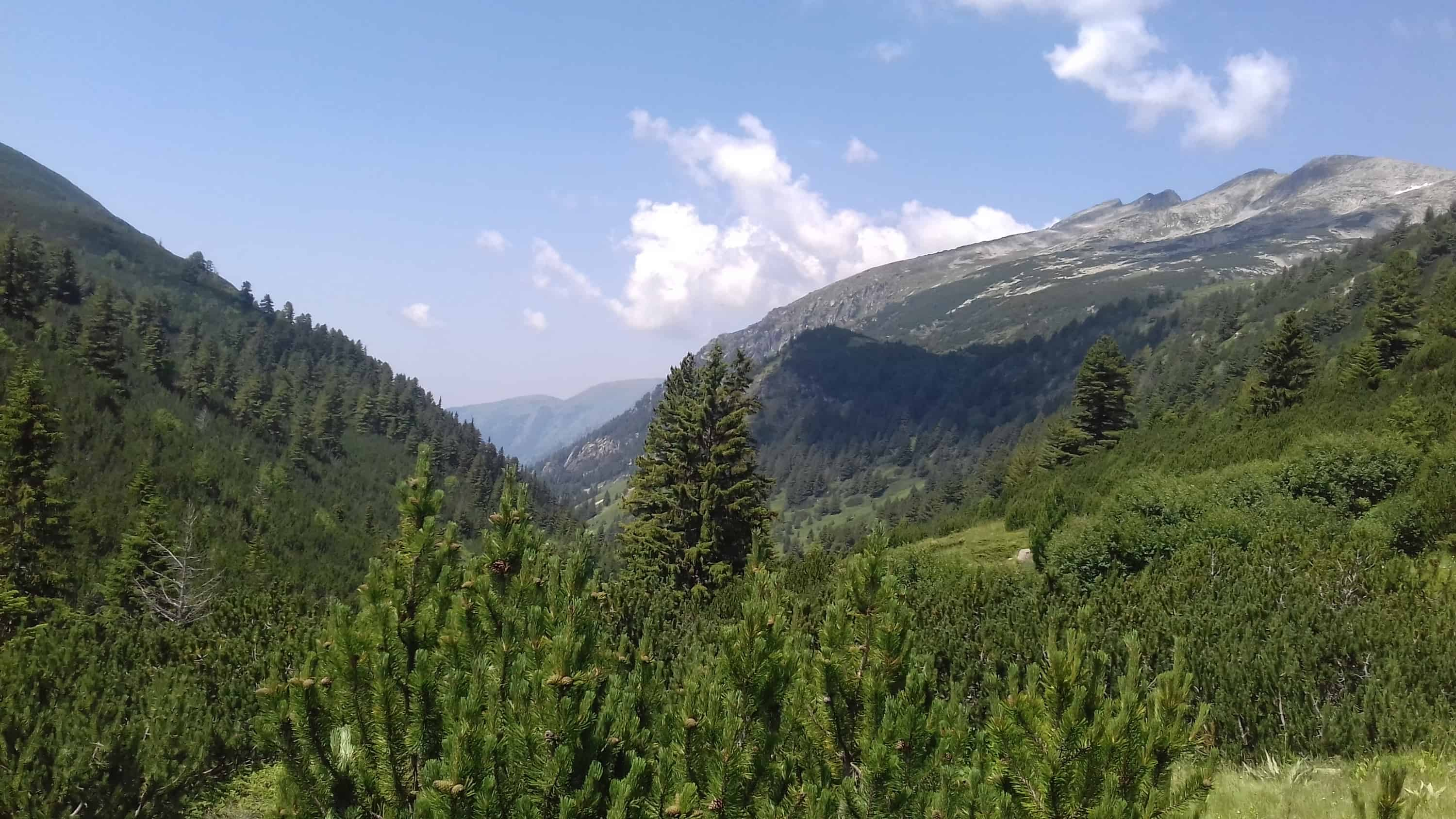 View from Kobilino Braniste - Photo: Rila Monastery Park Directorate