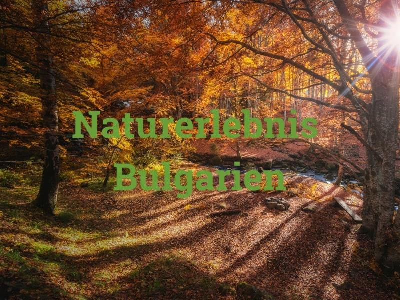 """Videotitel des Videos """"Naturerlebnis Bulgarien"""""""