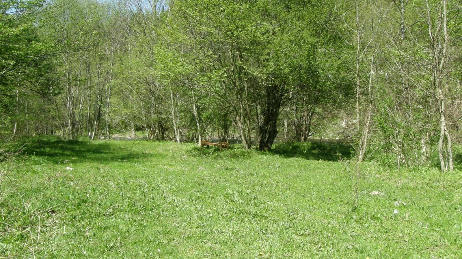 Am Rila-Fluß - Foto: Direktorat des Naturparks Rila-Kloster