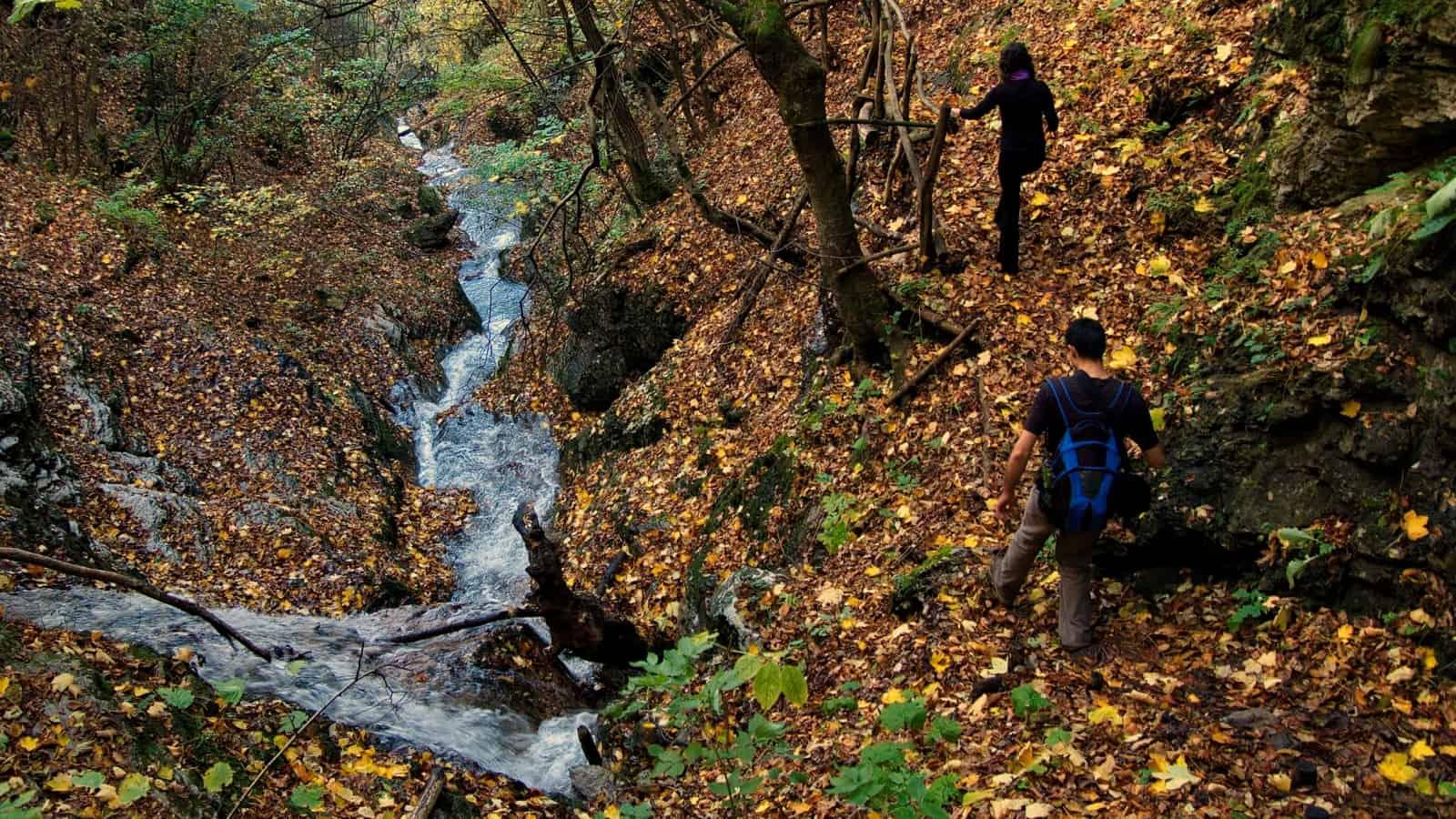 Borov-kamak-Trail - Foto: Vrachanski Balkan Naturpark