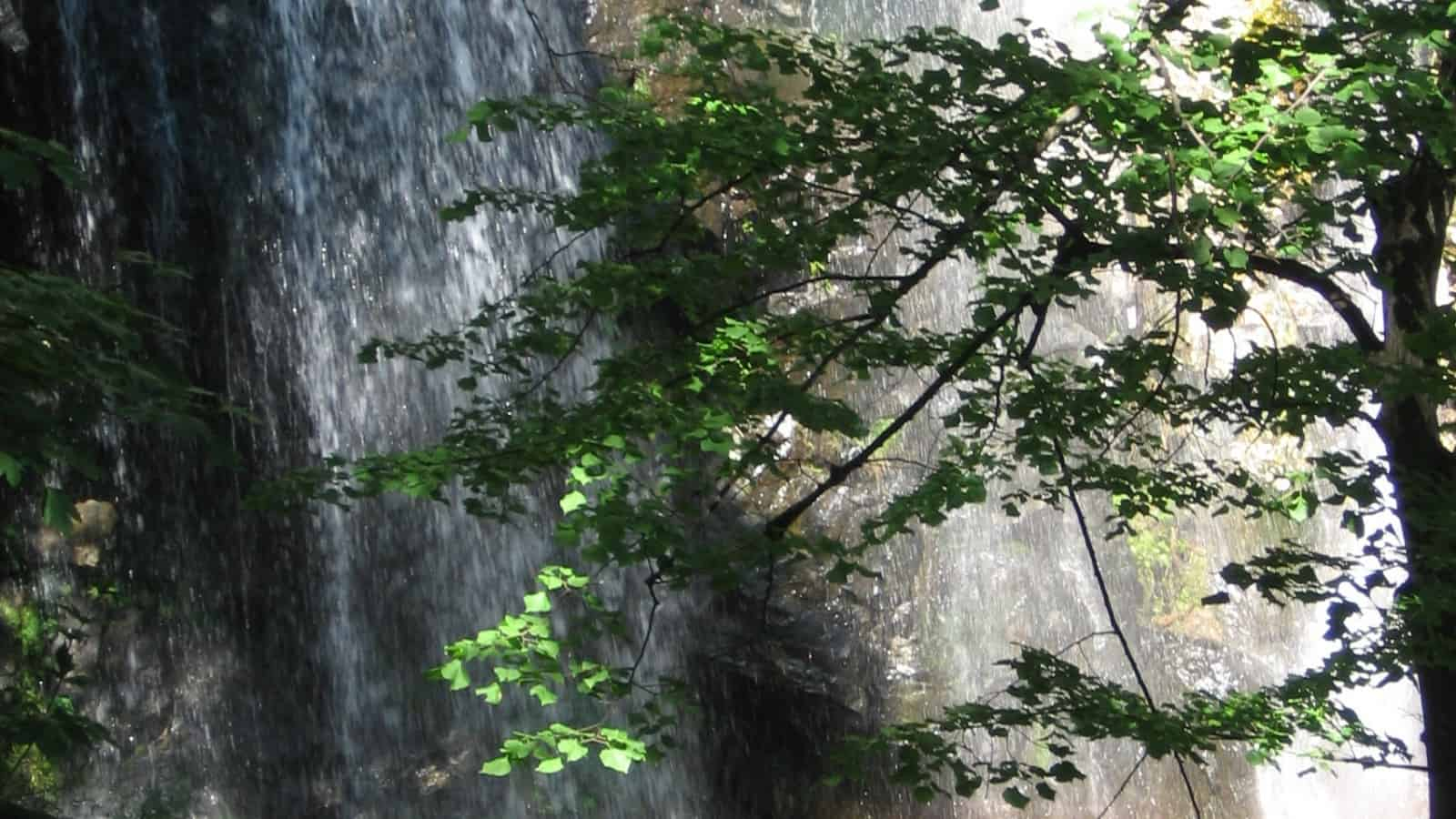 Boyana-Wasserfall - Foto: Vitosha Naturpark