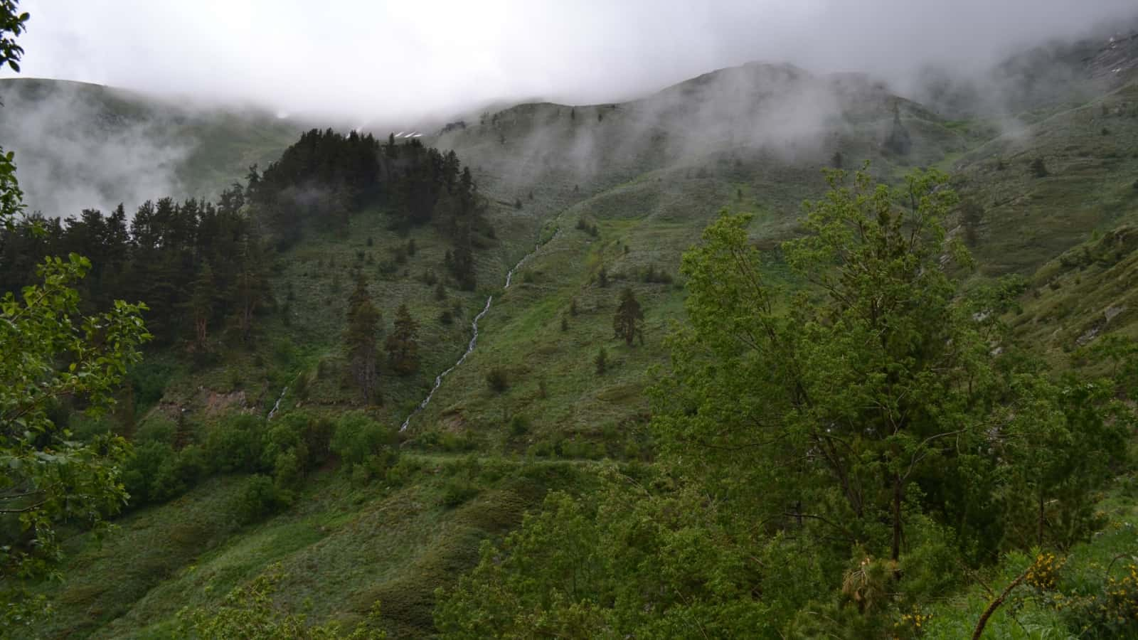 Fluß Ilina - Foto: Rila Monastery Park Directorate