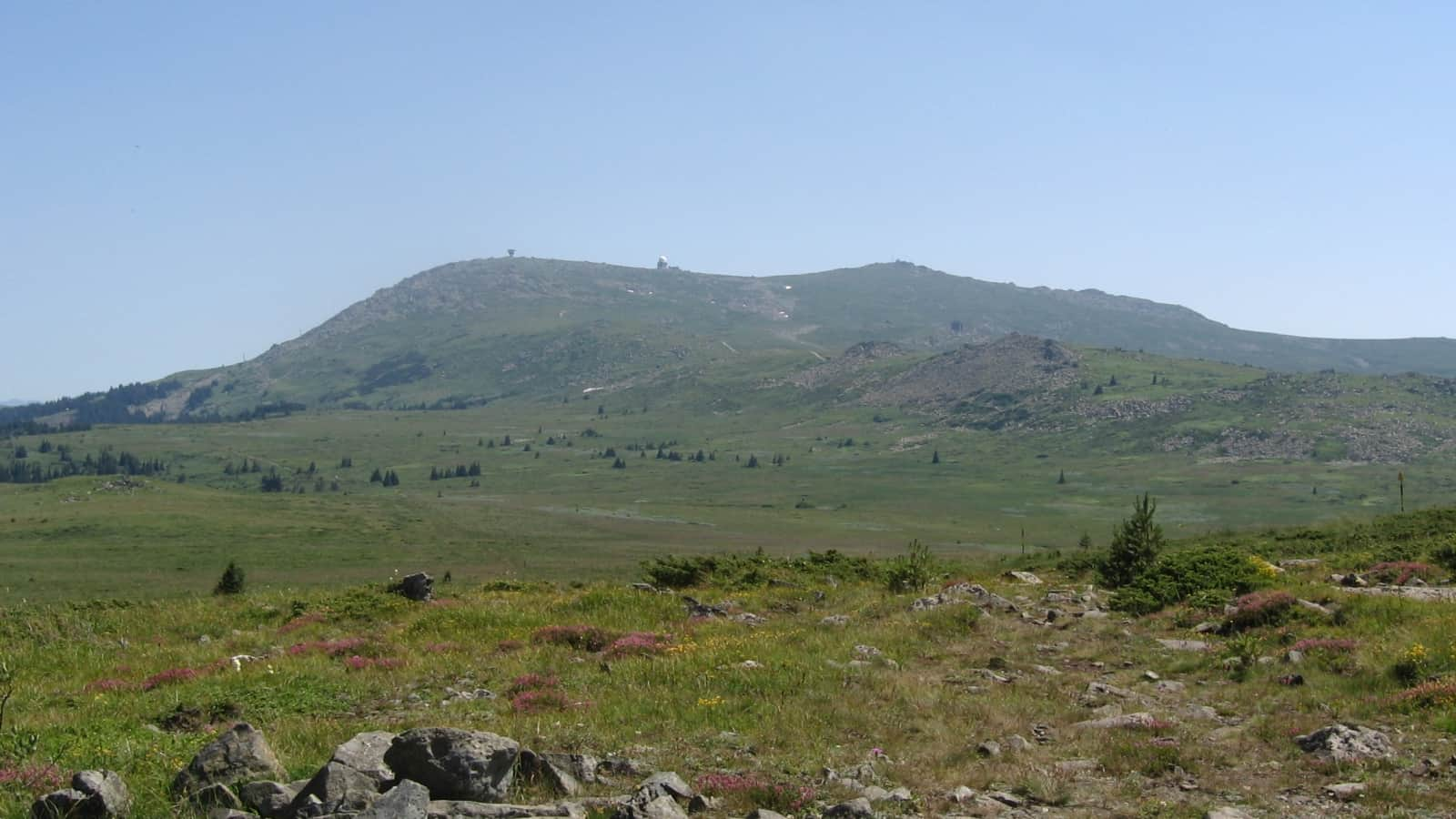 Landschaft - Foto: Vitosha Naturpark