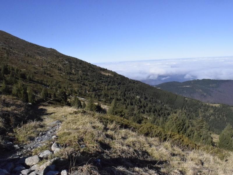 Ein Stück des Pfades - Foto: Nationalpark Zentralbalkan/Stoyan Hristov