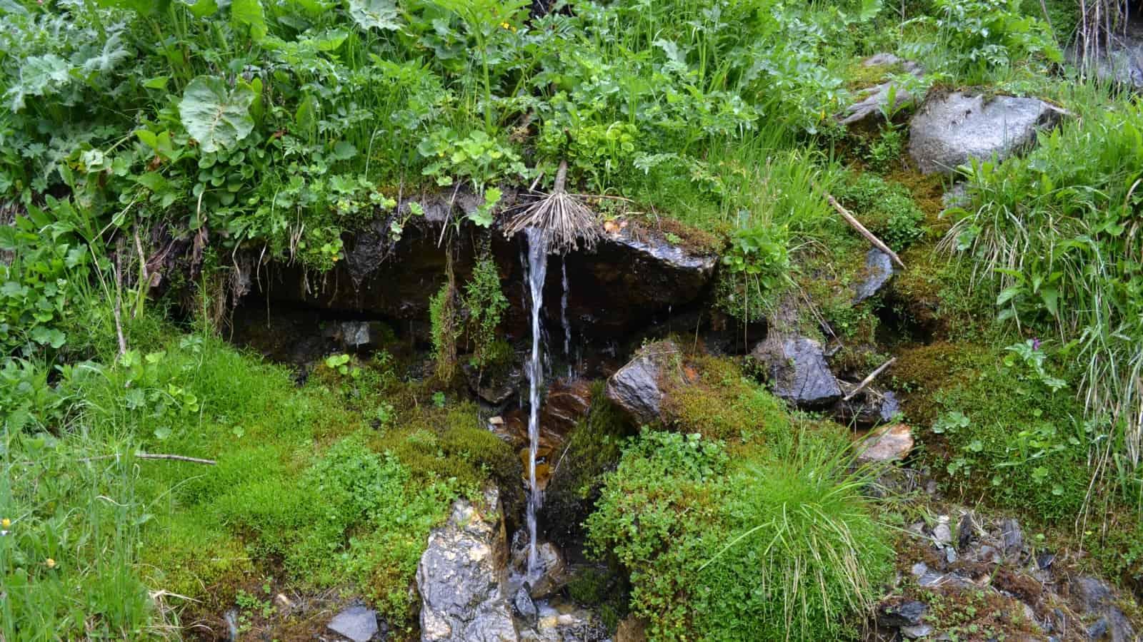 Wasserscheide Naturpark Rila-Kloster - Foto: Rila Monastery Park Directorate