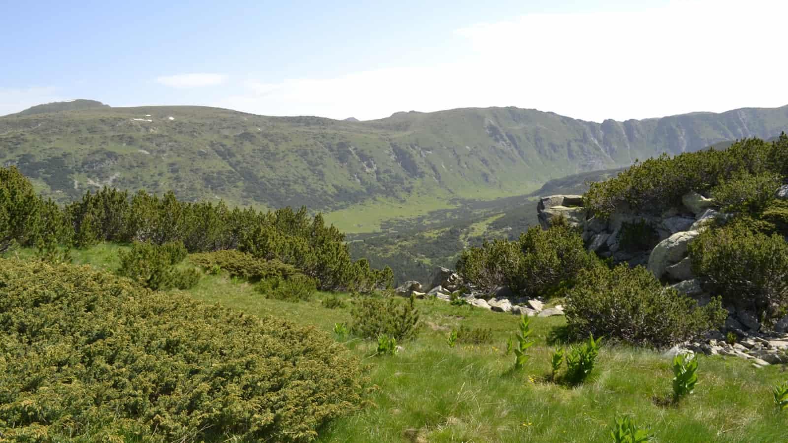 Malerische Aussicht - Foto: Rila Monastery Park Directorate