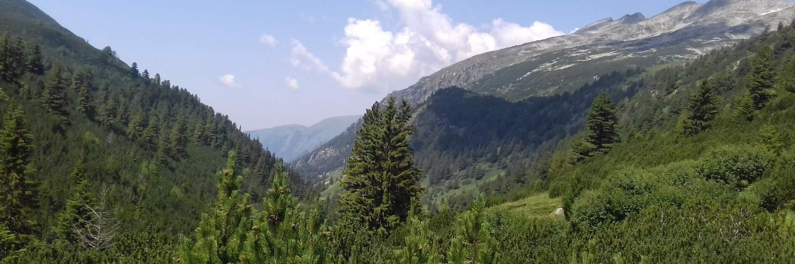 Blick von Kobilino Braniste - Foto: Rila Monastery Park Directorate
