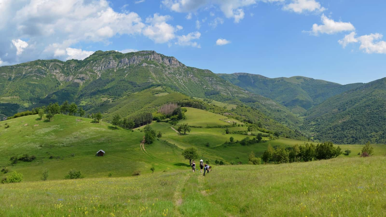 Bergwiesen mit Orchideen - Panoramaaufnahme - Foto: Vrachanski Balkan Naturpark/Krasimir Lakovski