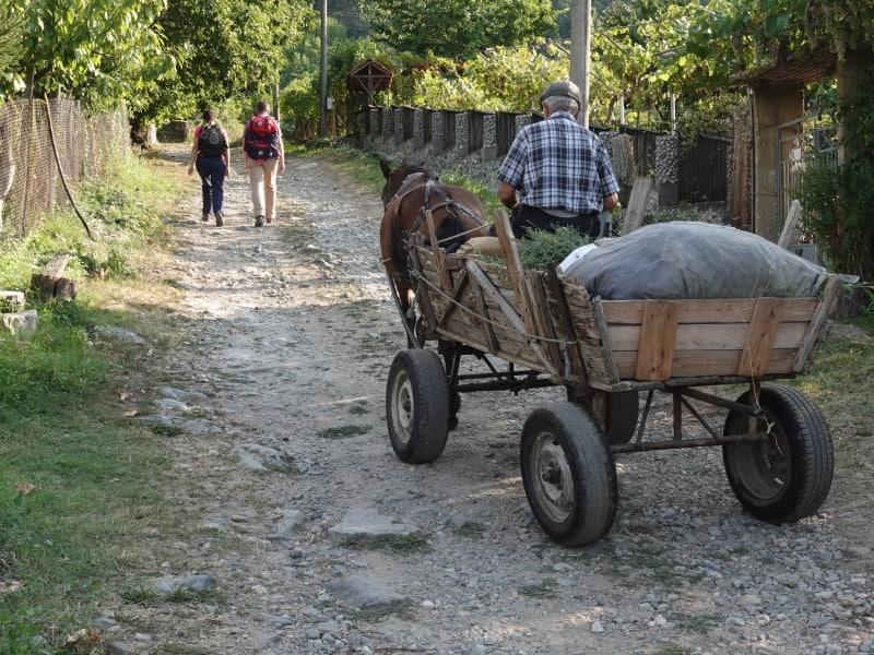 Spaziergang durch Yavornitsa, vorbei an einem traditionellen Transportmittel   Foto: Terolog