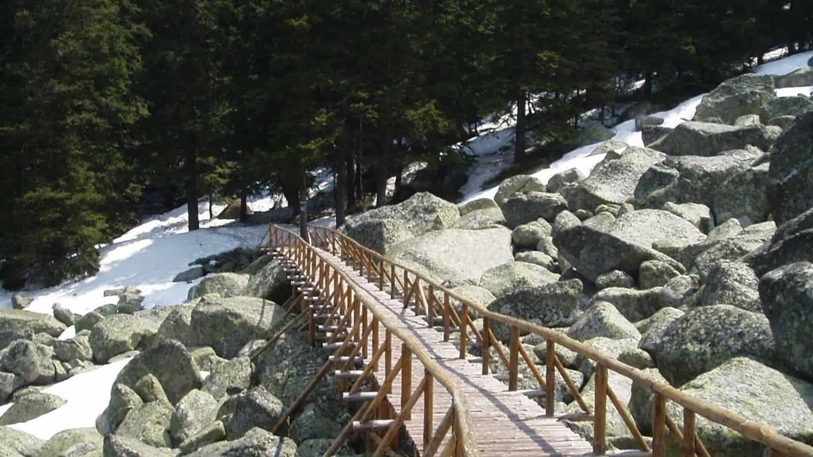 Winter - Foto: Vitosha Naturpark